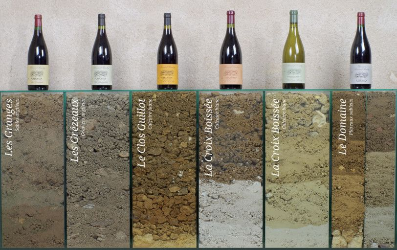 Soils of selected bottlings